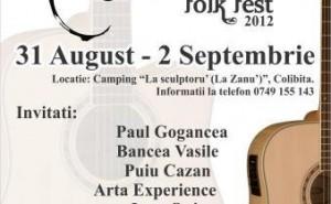 Concerte folk