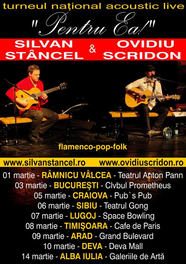 muzica folk
